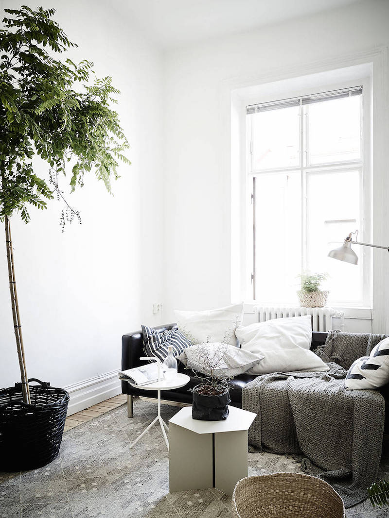 greenplants-part-of-the-interiors-2