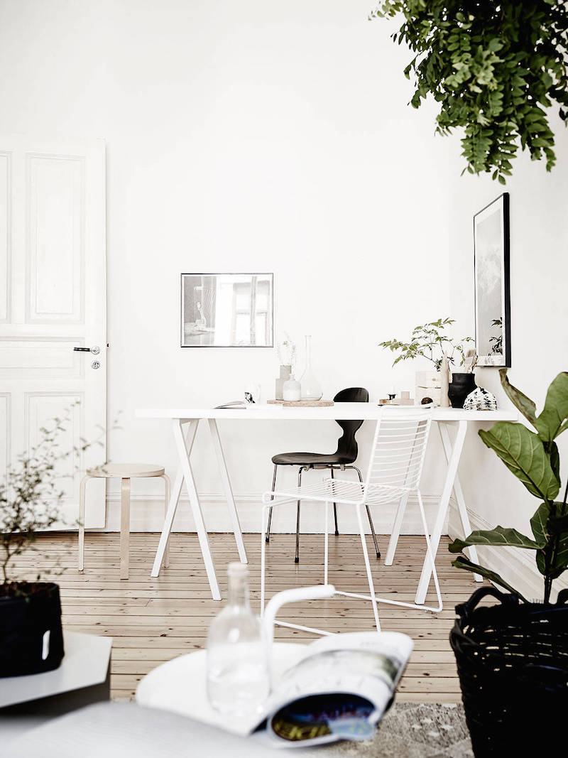 greenplants-part-of-the-interiors-4