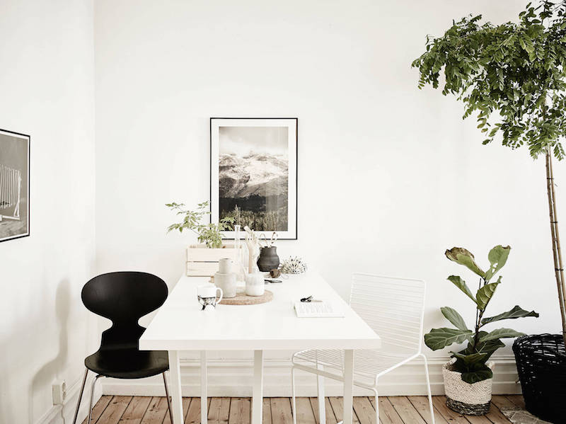 greenplants-part-of-the-interiors-5