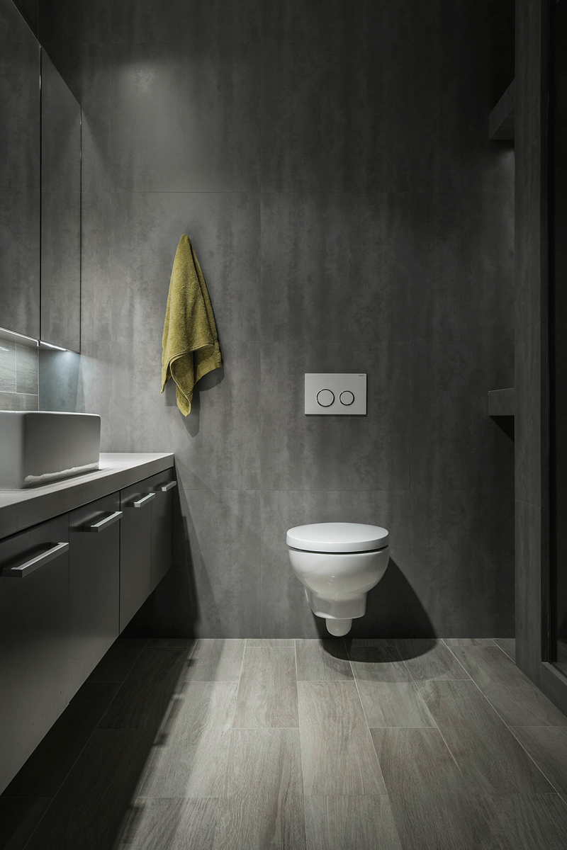 contemporary-apartment-wall-mounted-toilet