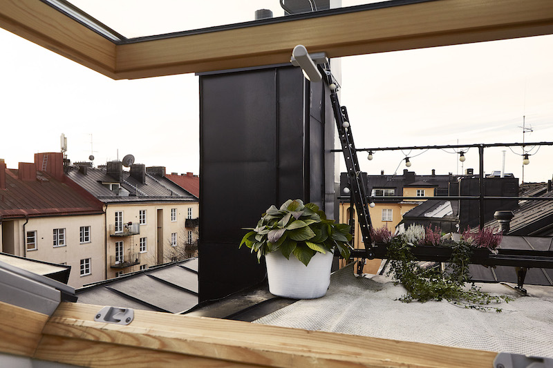 studio-apartment-with-loft-skywindow-view