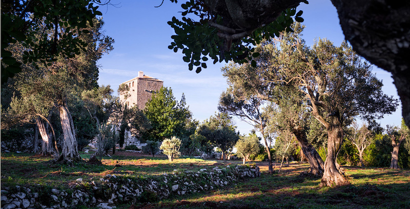 garden-croatian-tower