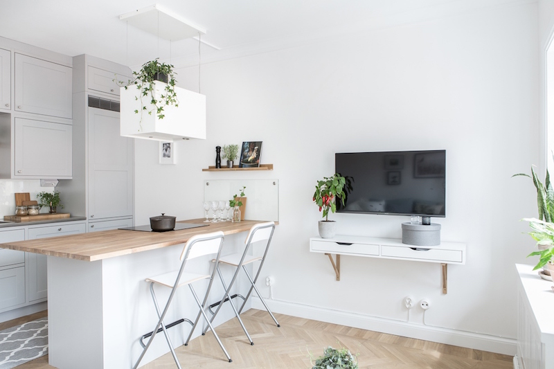small-two-room-apartment-scandinavian-television