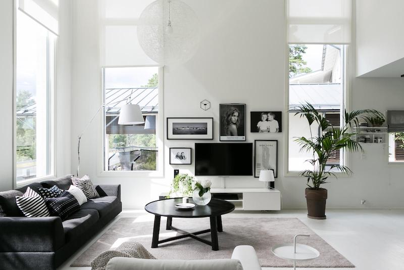 Black White Interior Scandinavian Living Room