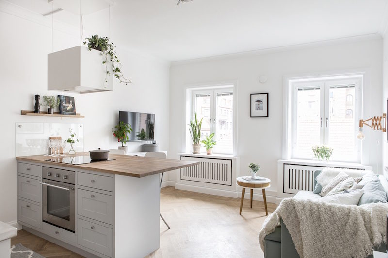 Small Apartment In White Spiced With Wood